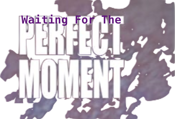 Waiting For The Perfect Moment