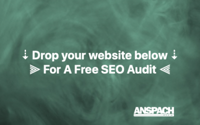 The Foremost Expert On Specialized SEO Uses A.P.E. Thinking